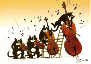 quatuor à chat